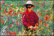 DIE FARBEN DES PARADIESES (1999)