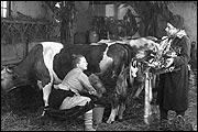 KOHLHIESELS TÖCHTER (1920)